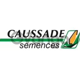 Оригинальные французские семена кукурузы и подсолнуха Caussade Semences