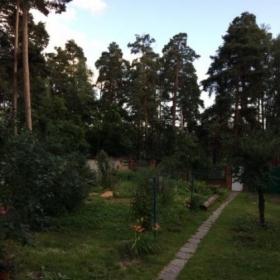 Сдается в аренду дом 3-ком 70 м² Малаховка