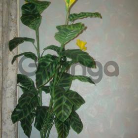 Продам цветок исск.новый,высота 135см.