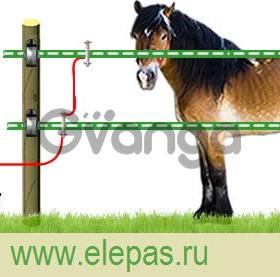 Электропастух для лошадей