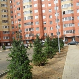 Сдается в аренду квартира 1-ком 45 м² Центральная,д.4