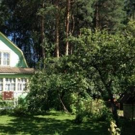 Сдается в аренду дом 4-ком 84 м² садовое товарищество Озерки