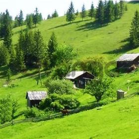 Продается хозяйство с роскошным земельным участком 400 соток в Карпатах