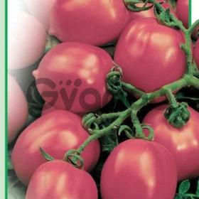 Семена томата «Тарасенко розовый»