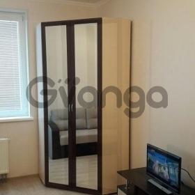 Сдается в аренду квартира 1-ком 30 м² улица Катерников, 5к1, метро Проспект Ветеранов