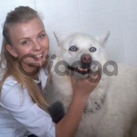 Ветеринар на дом в Харькове