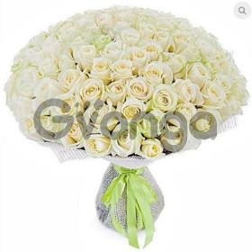 Цветы букет 101 белая роза