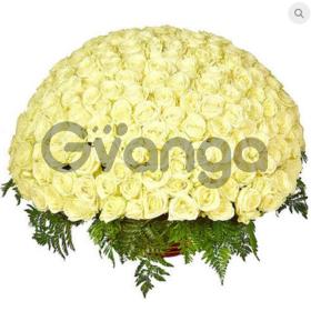 Цветы букет 151 белая роза