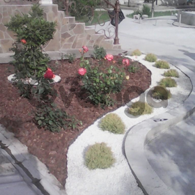 """Садовник """"Уход за растениями от А до Я"""""""
