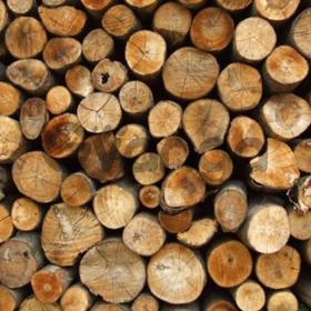 компания преобретет дрова акации
