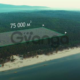 Продажа земельного участка на Байкале (Собственность)