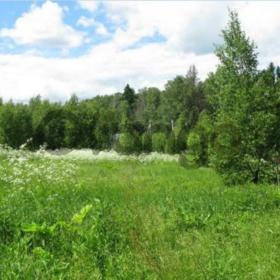 Продается участок 1500 м² деревня Соколово
