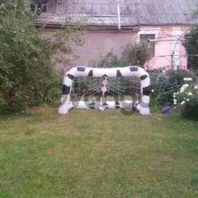Продается дом. в Киевская обл. п.г.т.Ворзель.