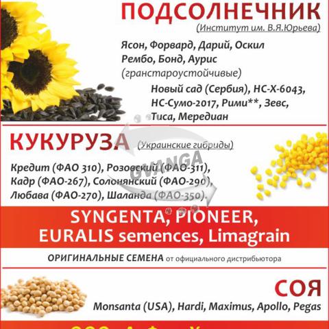 Посевной материал Новый Сад(Сербия) гранстарустойчивый подсолнух НС-Сумо-2017*