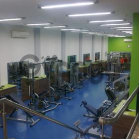 Абонемент в тренажерный зал Freestyle (в стоимость входит: бассейн,тренажерный зал, групповые занятия)