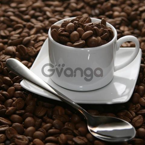 Кофе Сублимированный Растворимый Арабские Эмираты Оптом