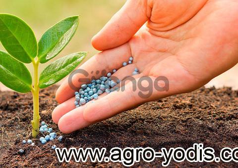 Средства защиты растений: гербициды, фунгициды, протравители, инсектициды
