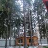 Сдается в аренду дом 3-ком 25 м² микрорайон Подрезково