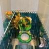 Сдается в аренду квартира 2-ком 46 м² Энгельса,д.4