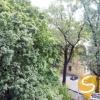 Продается квартира 1-ком 68.61 м² Антонова Авиаконструктора ул. 4а