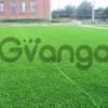 Ламинат, линолеум, штучная трава