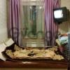 Сдается в аренду квартира 2-ком 40 м² Сизова Пр.,  32к1, метро Комендантский проспект