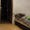 Сдается в аренду квартира 3-ком 62 м² Балканская Малая Ул.,  42Ак1, метро Купчино