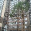 Продается квартира 1-ком 36 м² 2881,д.32