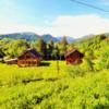 Продам 3-и экологических коттеджа по 200м2 в Карпатах, Кривополье