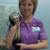 Ветеринарный врач на дом круглосуточно в Днепропетровске