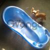 Детская синяя ванночка!