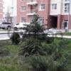 Продается квартира 3-ком 95 м² Филатова ул., д. 2\1