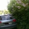 Audi A6, III (C6) 4.2 AT (350 л.с.) 4WD 2006 г.