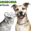 Корм Fitmin для взрослых собак мелких пород