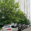 Продается квартира 1-ком 40 м² ул Дудинка, д. 2к2, метро ВДНХ