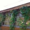 Сдается в аренду дом 2-ком 64 м² деревня Новая