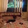 Сдается в аренду квартира 1-ком 28 м² Анадырский,д.69