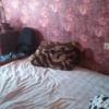 Сдается в аренду квартира 2-ком 43 м² Смурякова,д.13