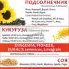 Посевной материал украинский гибрид кукурузы Любава фао-270