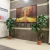 Продается квартира 1-ком 32.7 м² Областная улица 1, метро Улица Дыбенко
