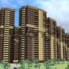 Продается квартира 1-ком 32.87 м² Кушелевская дорога 5к 5, метро Лесная
