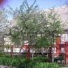 Продается дом 141 м² ул. Советская (Радянська)