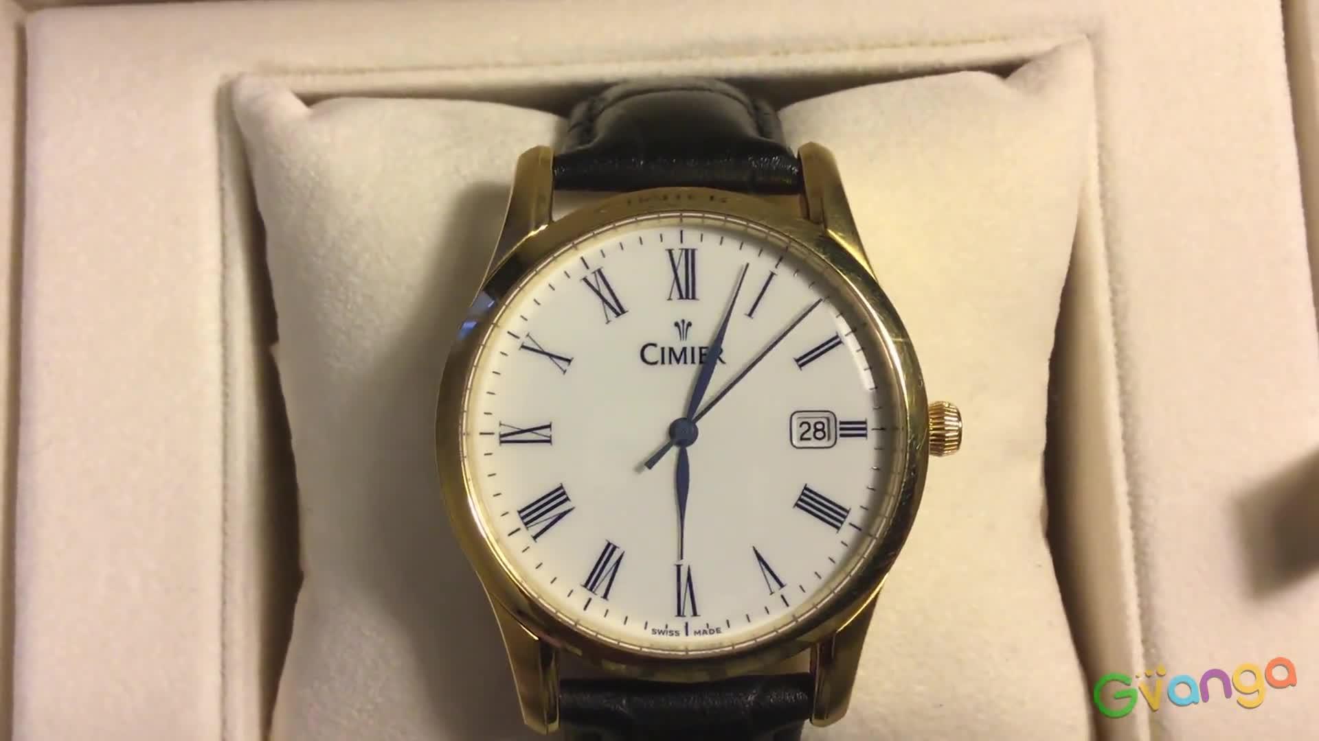 Часы CIMIER 2402-YP031